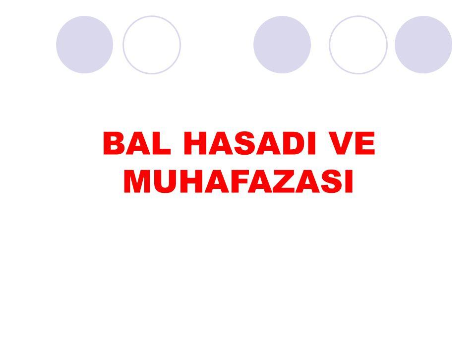 BAL HASADI VE MUHAFAZASI