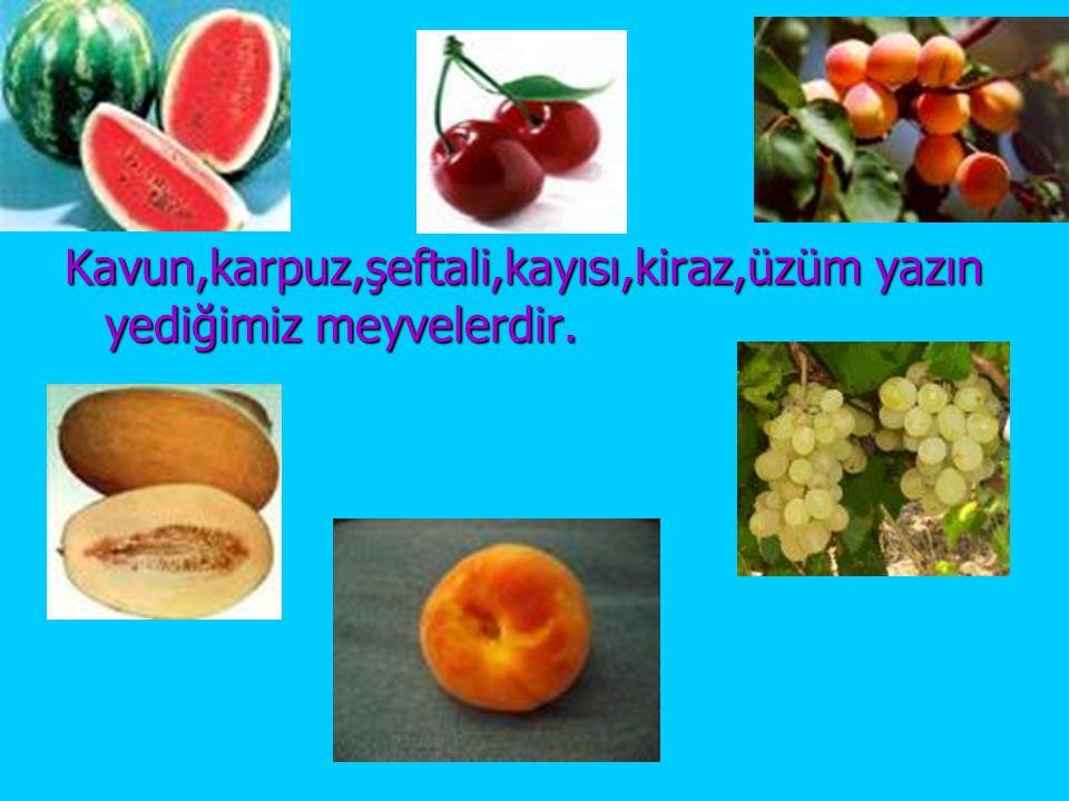 Kavun,karpuz,şeftali,kayısı,kiraz,üzüm yazın yediğimiz meyvelerdir.