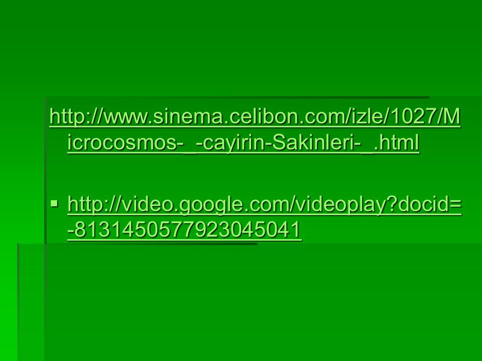 http://www. sinema. celibon