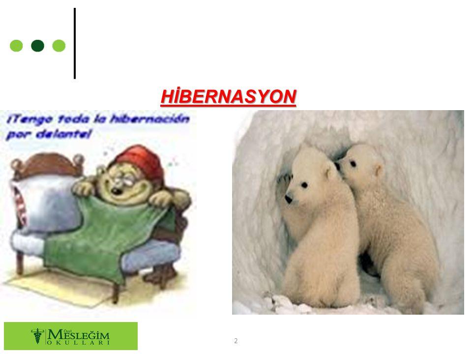 HİBERNASYON
