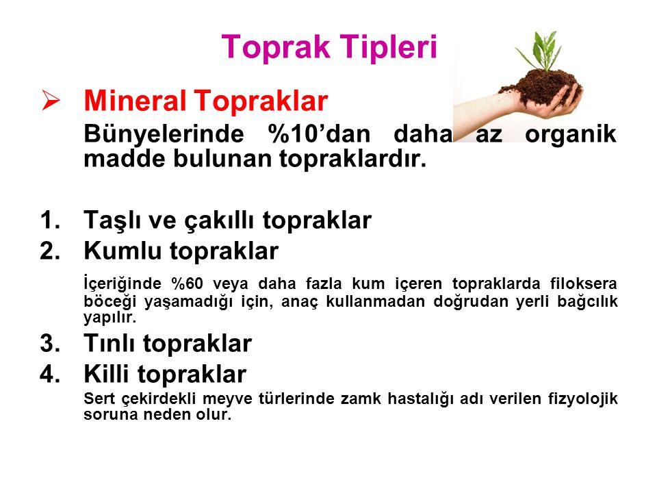 Toprak Tipleri Mineral Topraklar