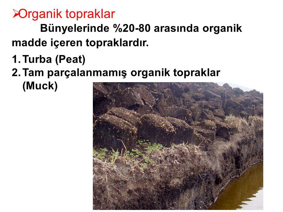Organik topraklar Bünyelerinde %20-80 arasında organik madde içeren topraklardır.