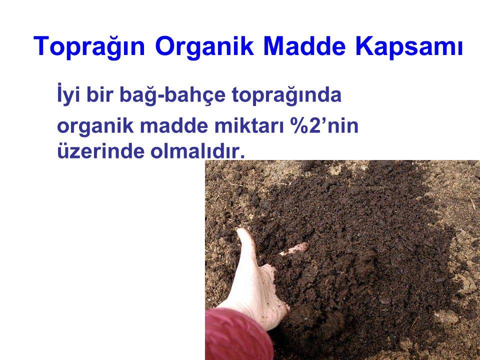 Toprağın Organik Madde Kapsamı