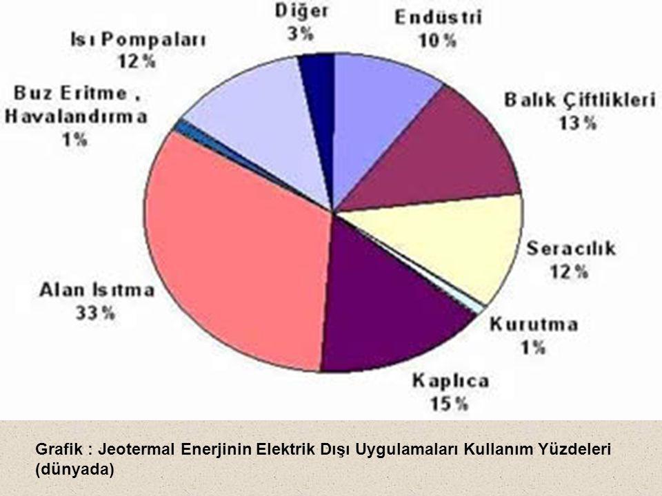 Grafik : Jeotermal Enerjinin Elektrik Dışı Uygulamaları Kullanım Yüzdeleri (dünyada)
