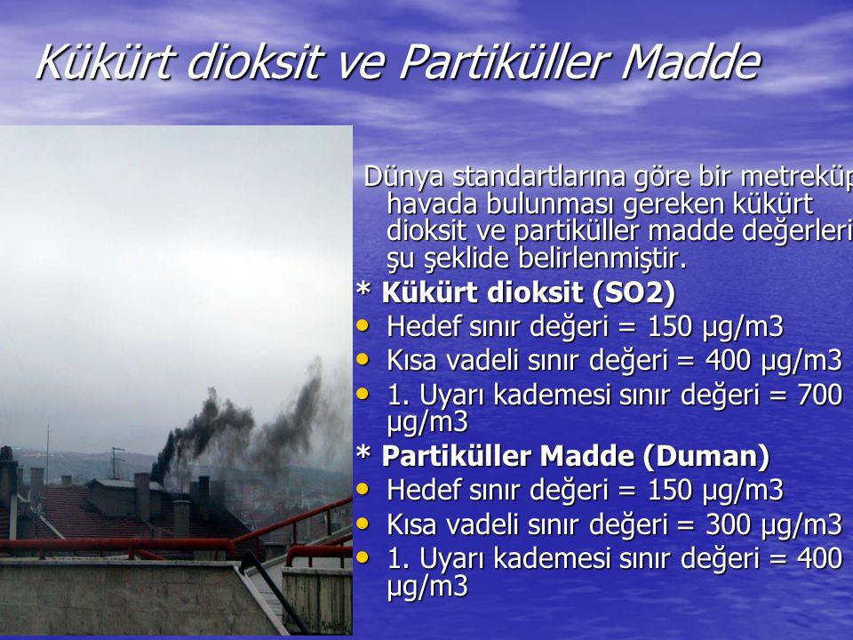 Kükürt dioksit ve Partiküller Madde
