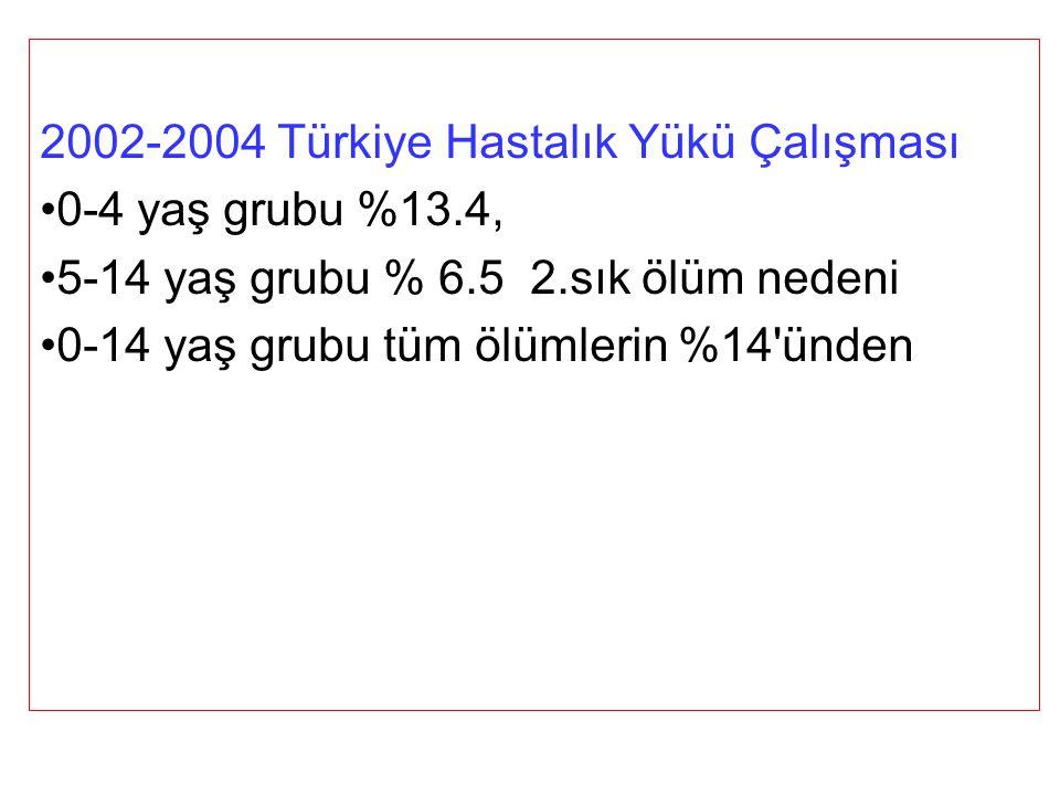 2002-2004 Türkiye Hastalık Yükü Çalışması