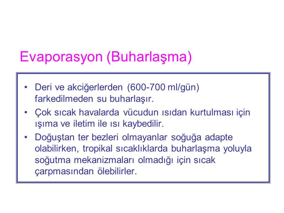 Evaporasyon (Buharlaşma)