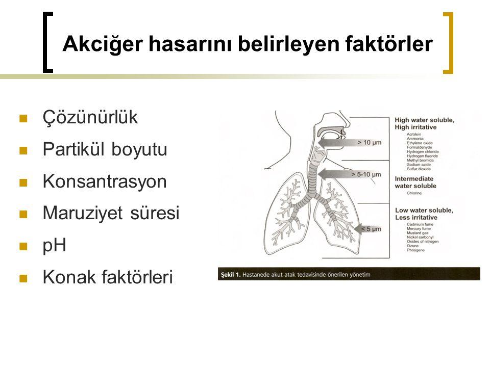 Akciğer hasarını belirleyen faktörler