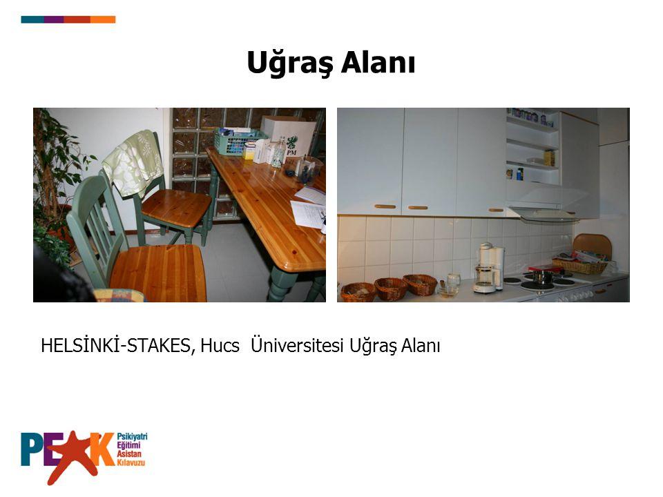 Uğraş Alanı HELSİNKİ-STAKES, Hucs Üniversitesi Uğraş Alanı