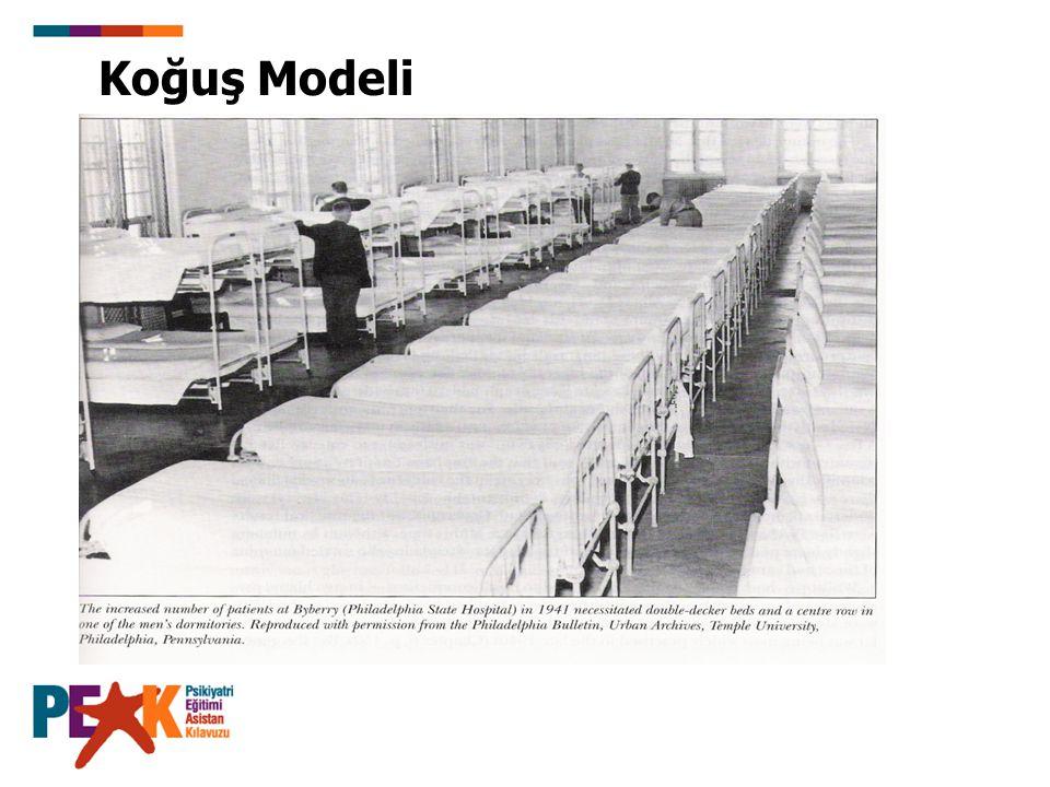 Koğuş Modeli