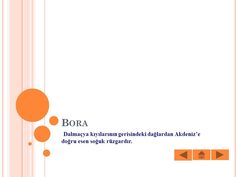 Bora Dalmaçya kıyılarının gerisindeki dağlardan Akdeniz'e doğru esen soğuk rüzgardır.