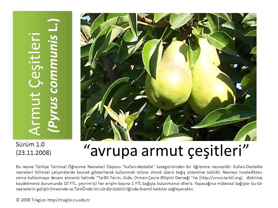 Armut Çeşitleri (Pyrus communis L.)