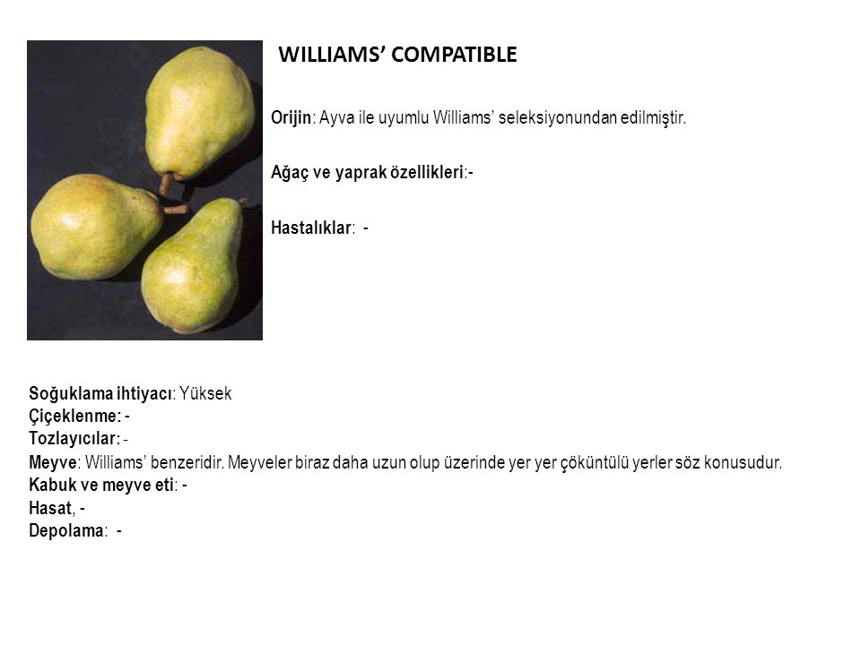 WILLIAMS' COMPATIBLE Orijin: Ayva ile uyumlu Williams' seleksiyonundan edilmiştir. Ağaç ve yaprak özellikleri:-