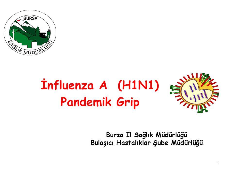 İnfluenza A (H1N1) Pandemik Grip
