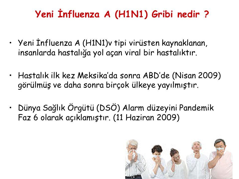Yeni İnfluenza A (H1N1) Gribi nedir
