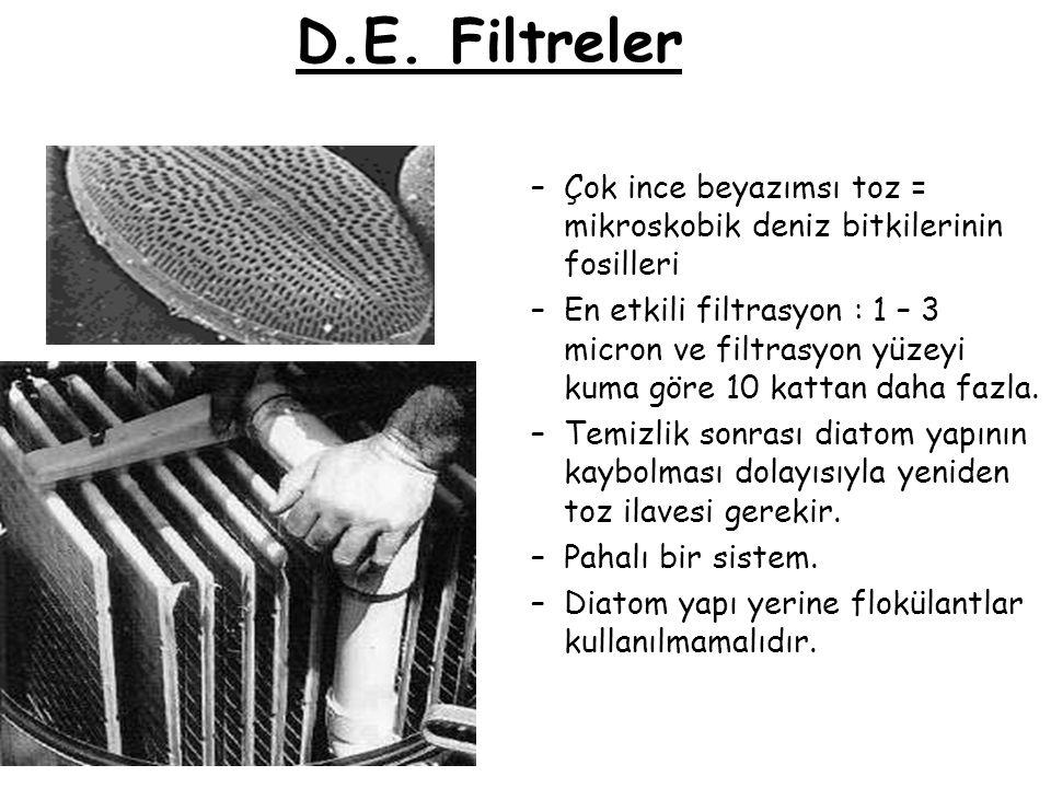 D.E. Filtreler Çok ince beyazımsı toz = mikroskobik deniz bitkilerinin fosilleri.