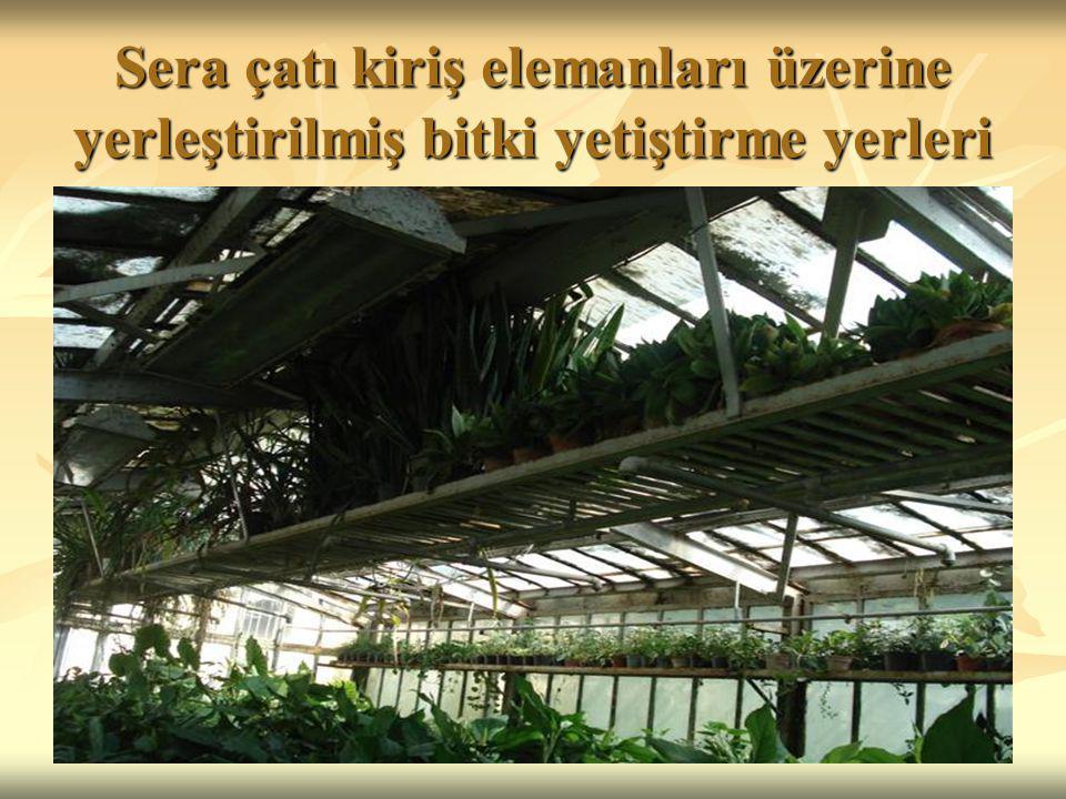 Sera çatı kiriş elemanları üzerine yerleştirilmiş bitki yetiştirme yerleri
