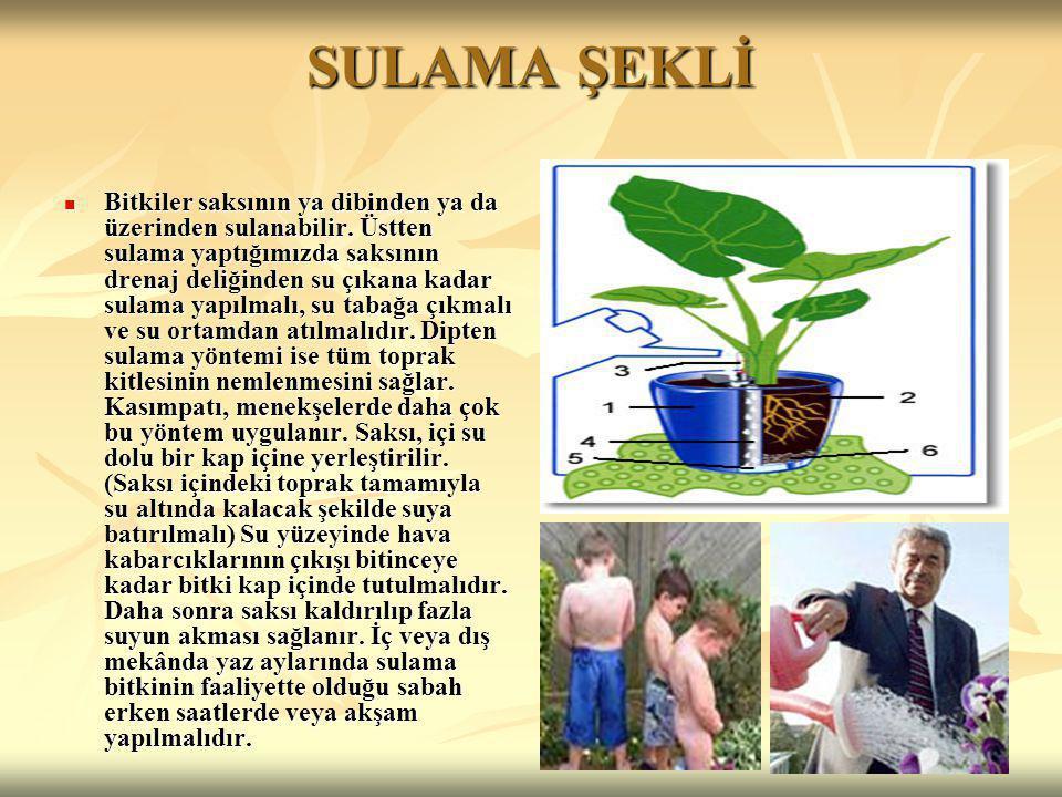 SULAMA ŞEKLİ