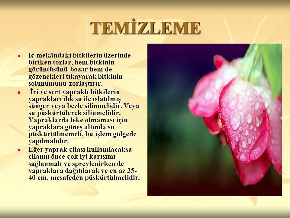 TEMİZLEME