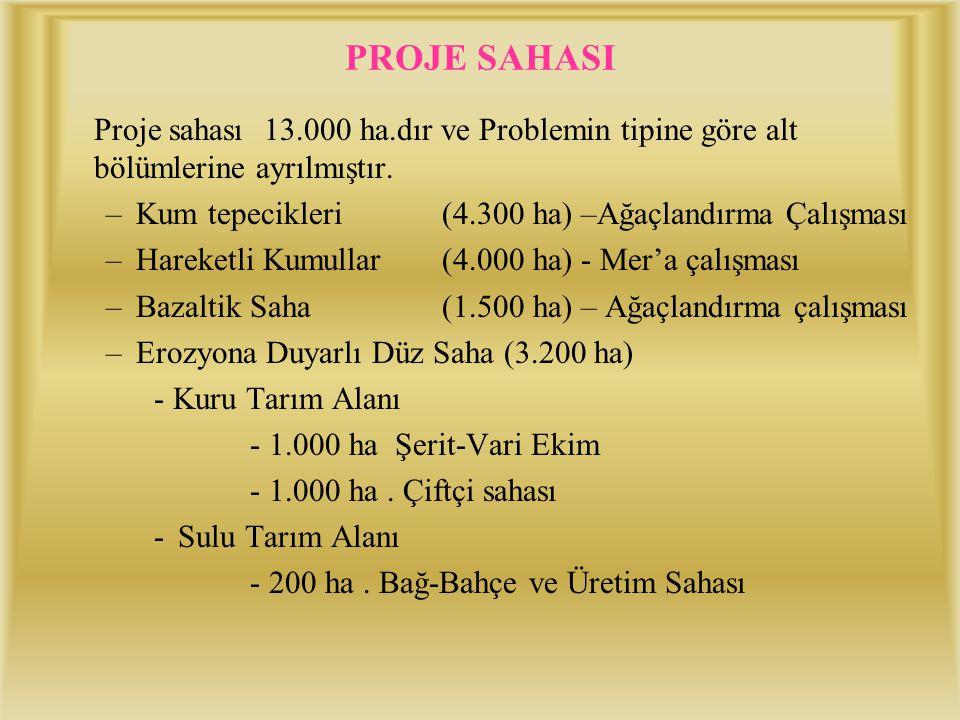 PROJE SAHASI Proje sahası 13.000 ha.dır ve Problemin tipine göre alt bölümlerine ayrılmıştır. Kum tepecikleri (4.300 ha) –Ağaçlandırma Çalışması.