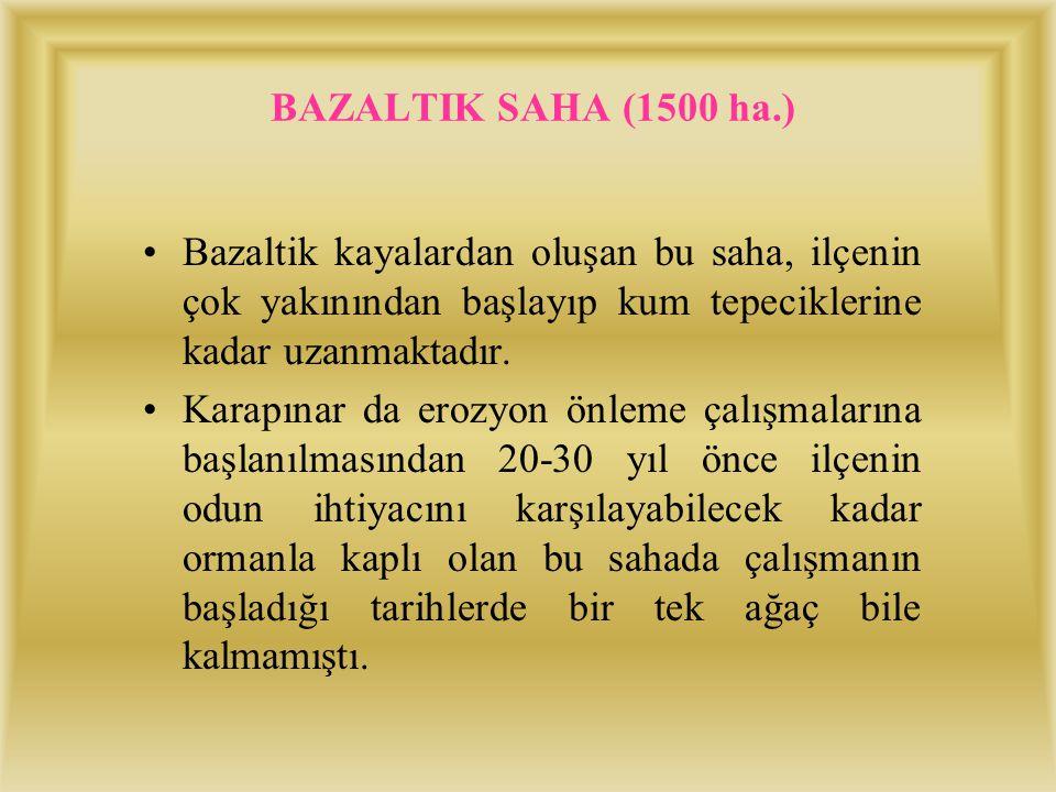 BAZALTIK SAHA (1500 ha.) Bazaltik kayalardan oluşan bu saha, ilçenin çok yakınından başlayıp kum tepeciklerine kadar uzanmaktadır.
