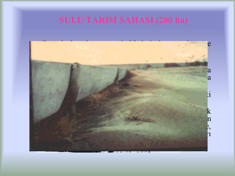 SULU TARIM SAHASI (200 ha) Bu sahada sulama amaçlı 35 derin kuyu açılmış ve bağ ve bahçe tesisleri kurulmuştur.