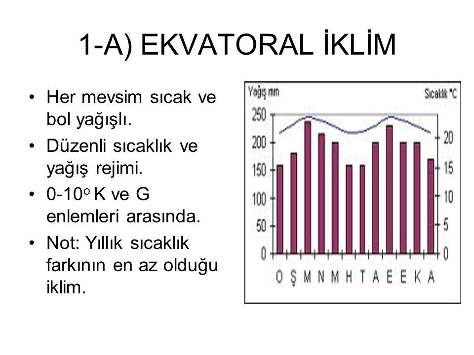 1-A) EKVATORAL İKLİM Her mevsim sıcak ve bol yağışlı.