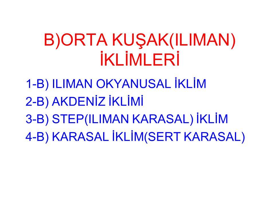 B)ORTA KUŞAK(ILIMAN) İKLİMLERİ