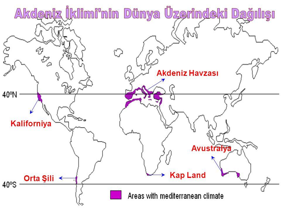 Akdeniz İklimi nin Dünya Üzerindeki Dağılışı