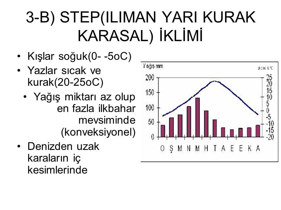 3-B) STEP(ILIMAN YARI KURAK KARASAL) İKLİMİ