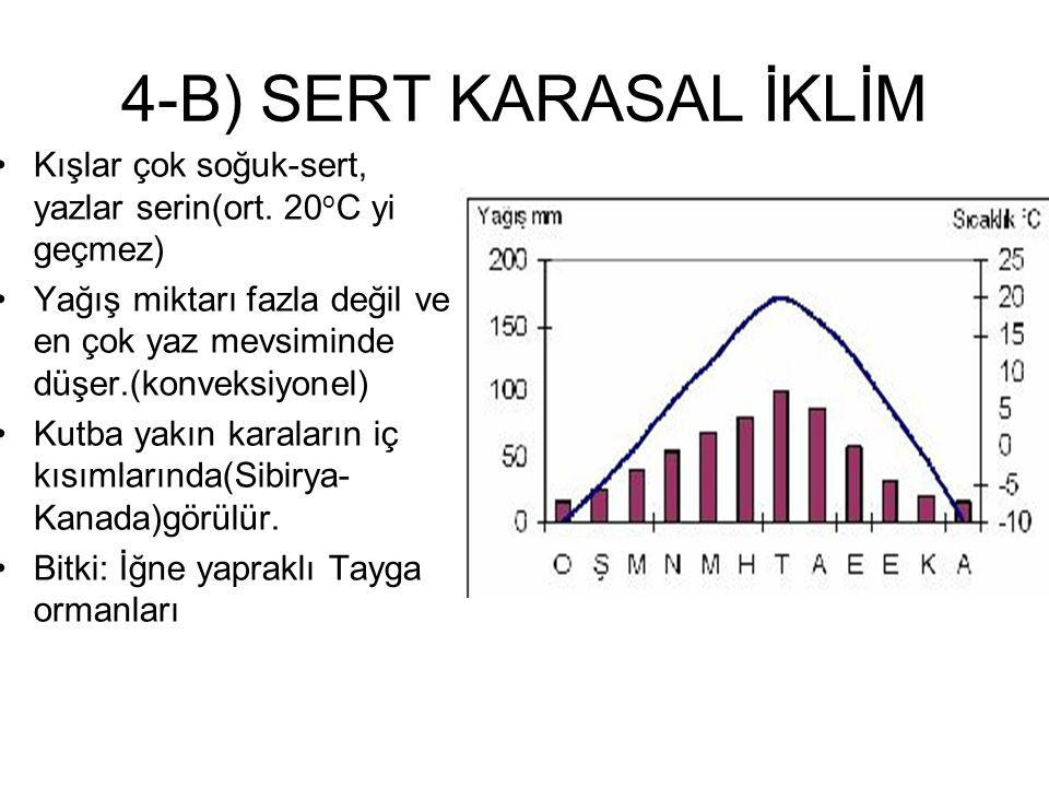 4-B) SERT KARASAL İKLİM Kışlar çok soğuk-sert, yazlar serin(ort. 20oC yi geçmez)