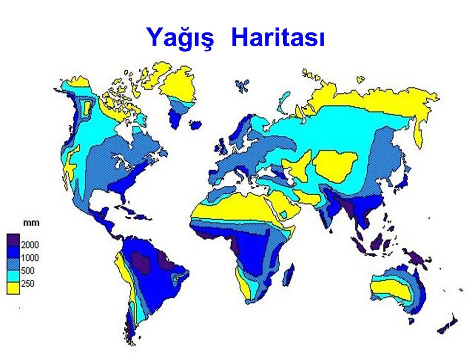 Yağış Haritası