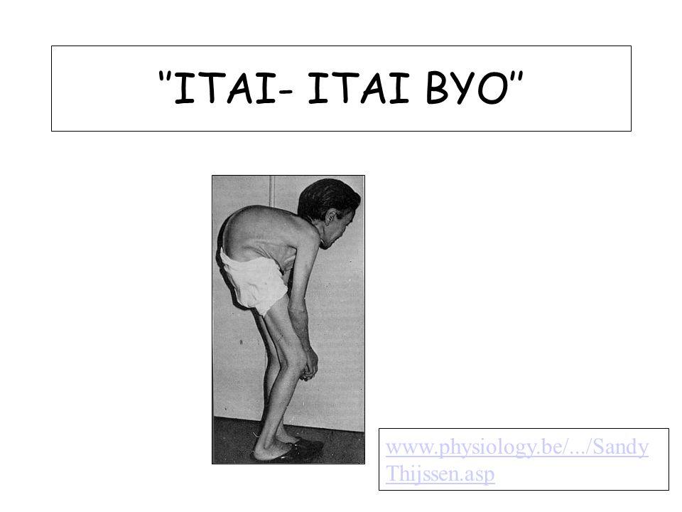 ''ITAI- ITAI BYO'' www.physiology.be/.../SandyThijssen.asp