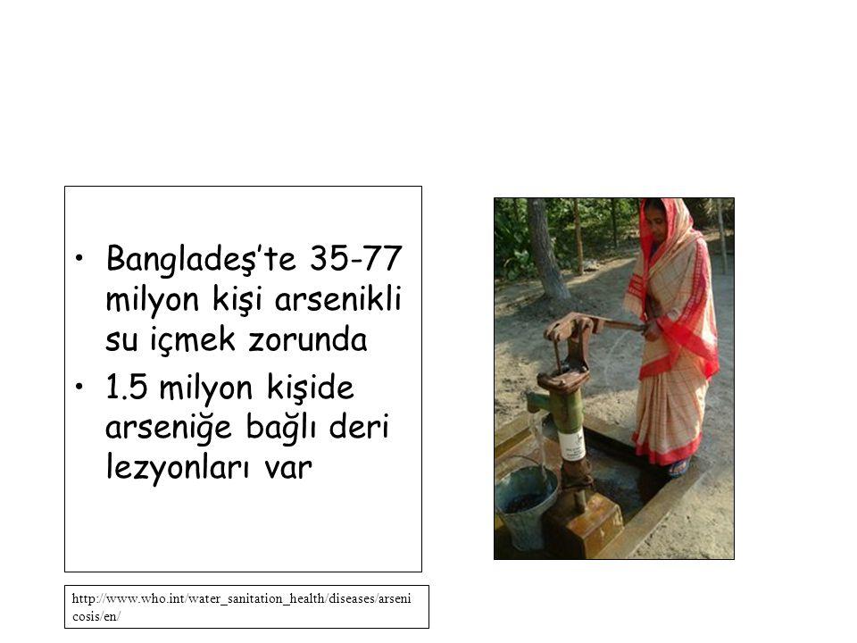 Bangladeş'te 35-77 milyon kişi arsenikli su içmek zorunda