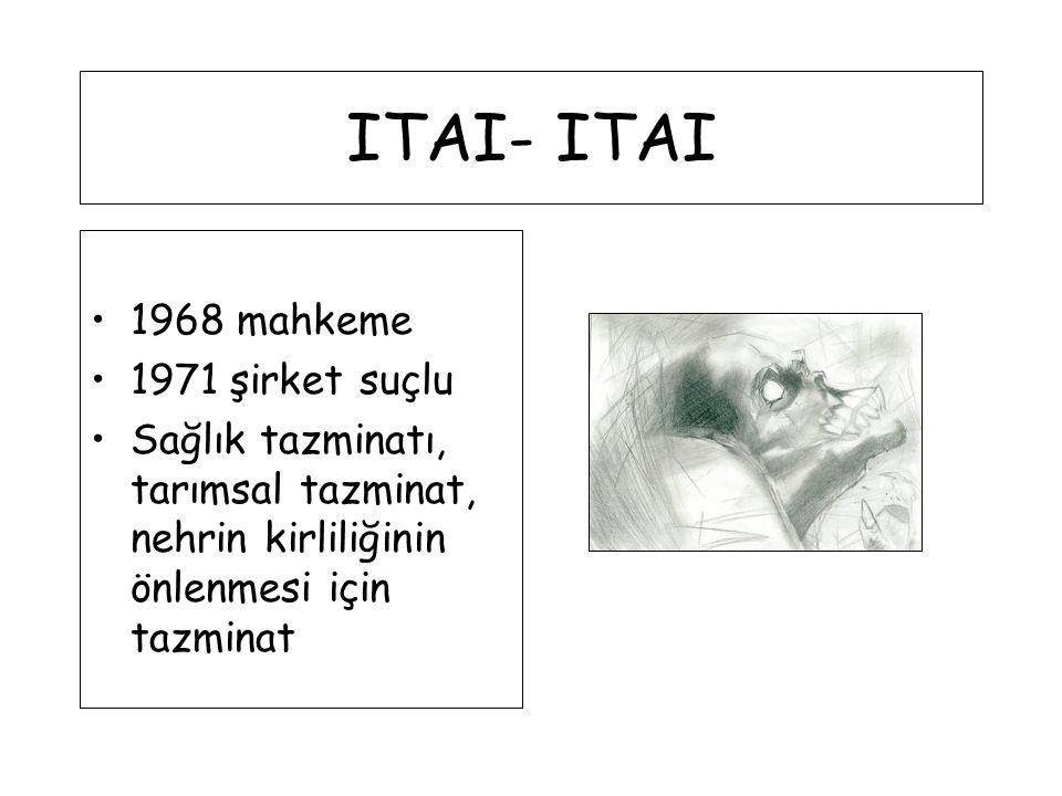 ITAI- ITAI 1968 mahkeme 1971 şirket suçlu