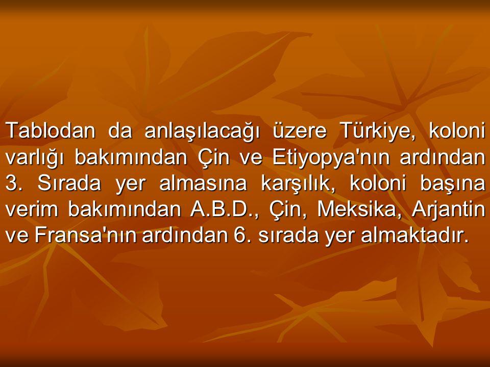 Tablodan da anlaşılacağı üzere Türkiye, koloni varlığı bakımından Çin ve Etiyopya nın ardından 3.