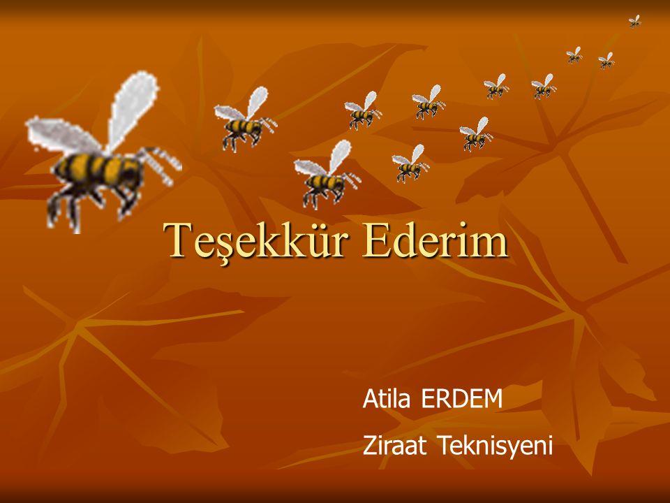 Teşekkür Ederim Atila ERDEM Ziraat Teknisyeni