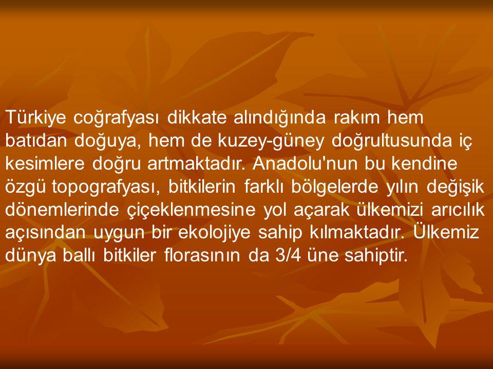 Türkiye coğrafyası dikkate alındığında rakım hem batıdan doğuya, hem de kuzey-güney doğrultusunda iç kesimlere doğru artmaktadır.