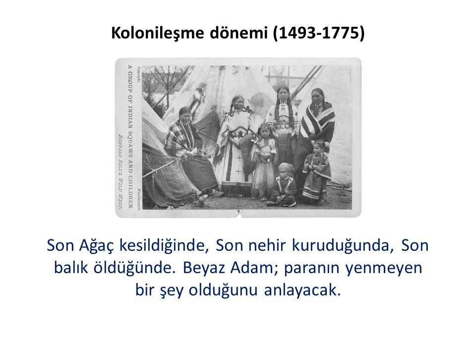 Kolonileşme dönemi (1493-1775)