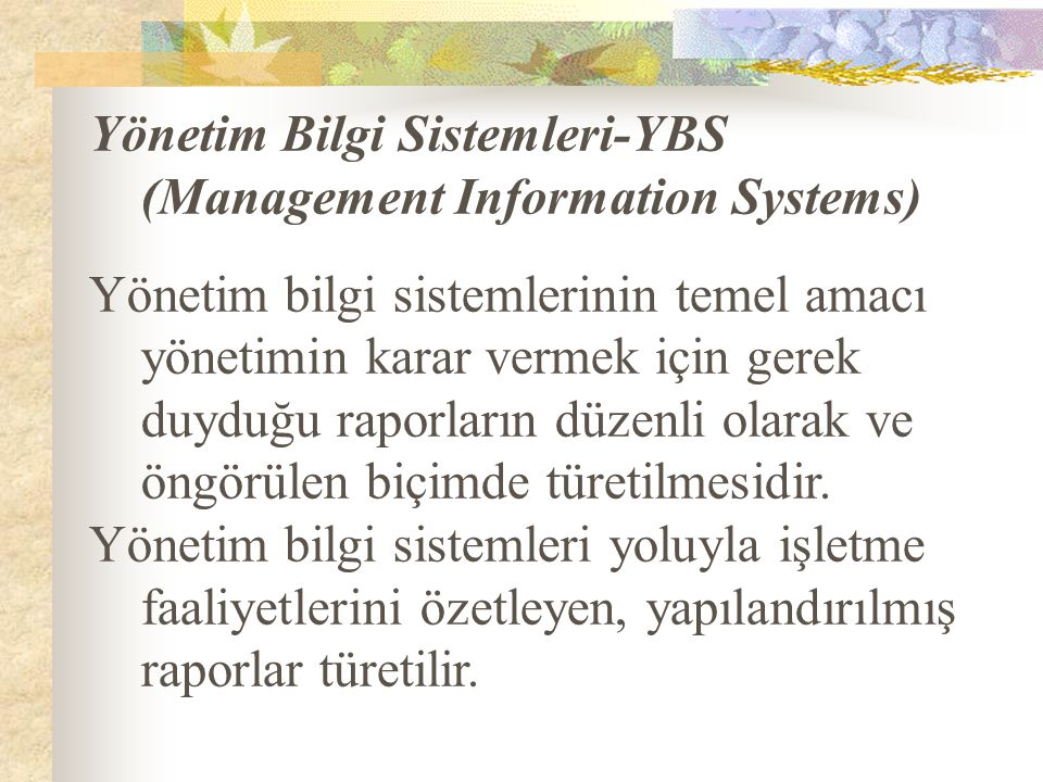 Yönetim Bilgi Sistemleri-YBS (Management Information Systems)