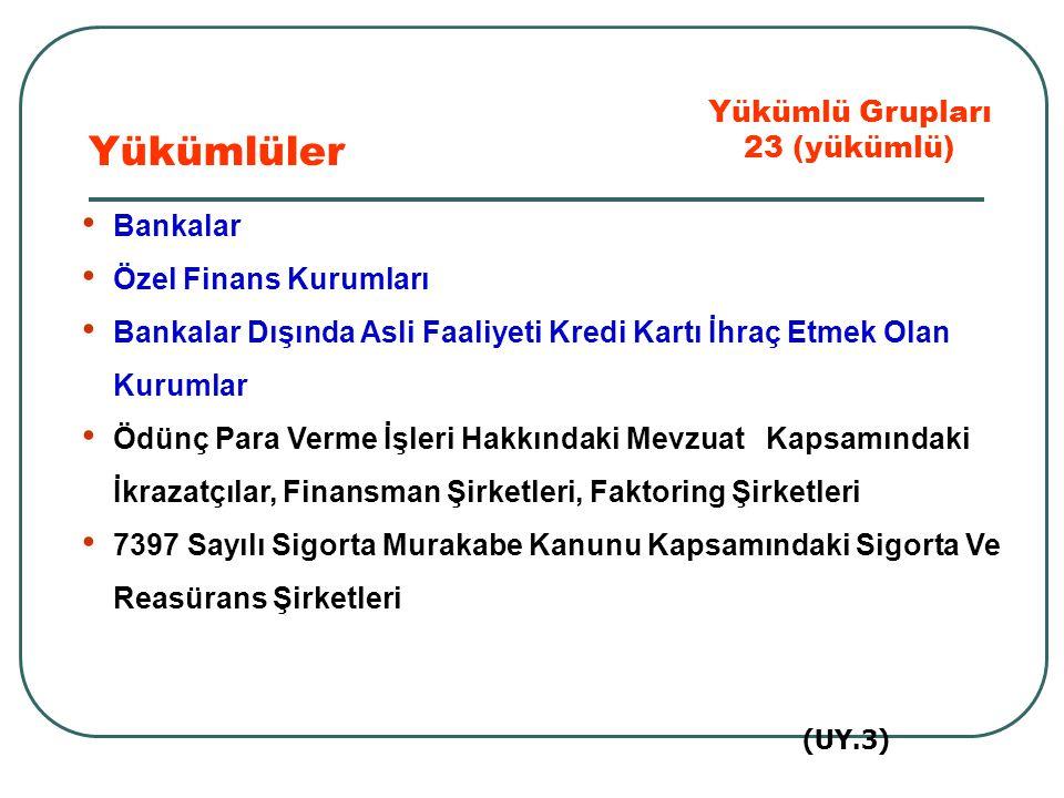 Yükümlüler Yükümlü Grupları 23 (yükümlü) Bankalar