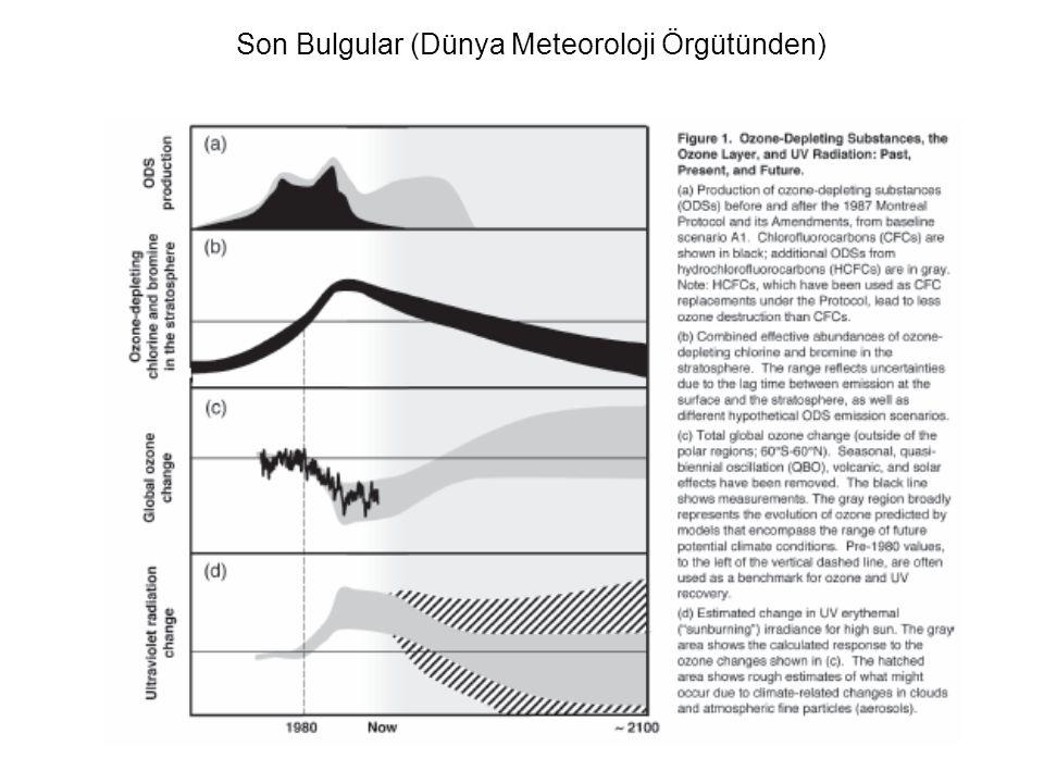 Son Bulgular (Dünya Meteoroloji Örgütünden)