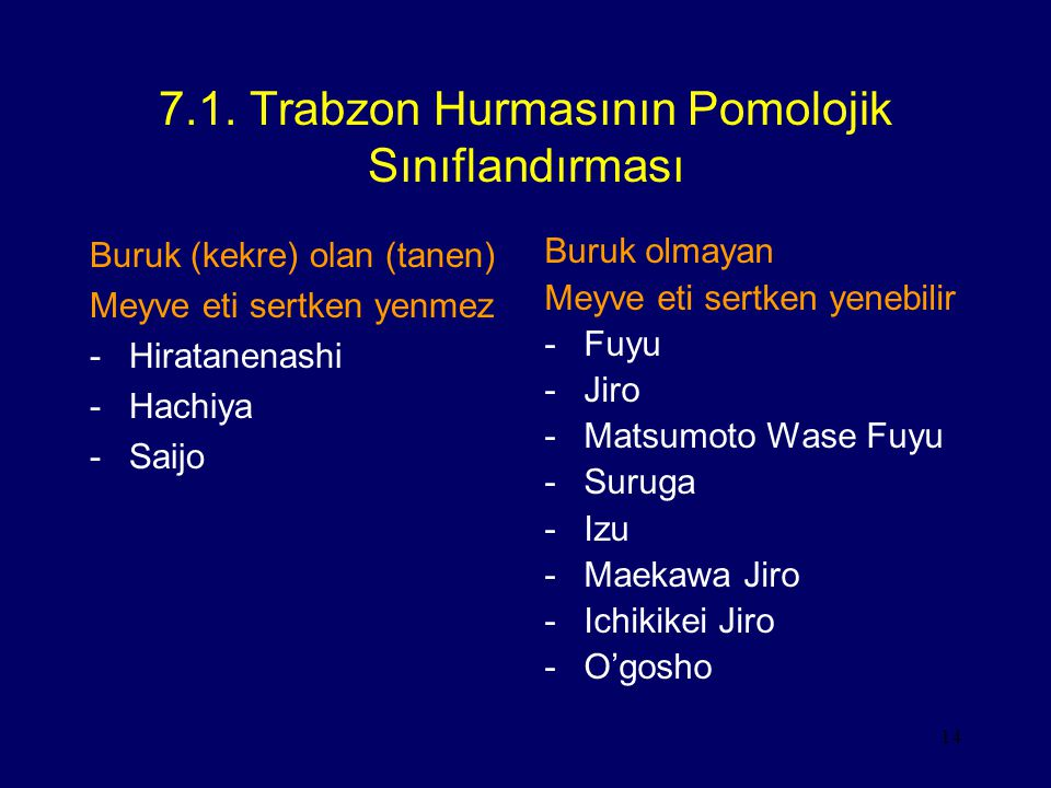 7.1. Trabzon Hurmasının Pomolojik Sınıflandırması