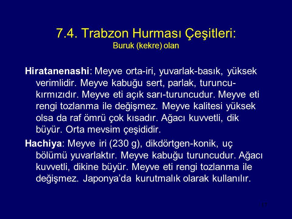 7.4. Trabzon Hurması Çeşitleri: Buruk (kekre) olan