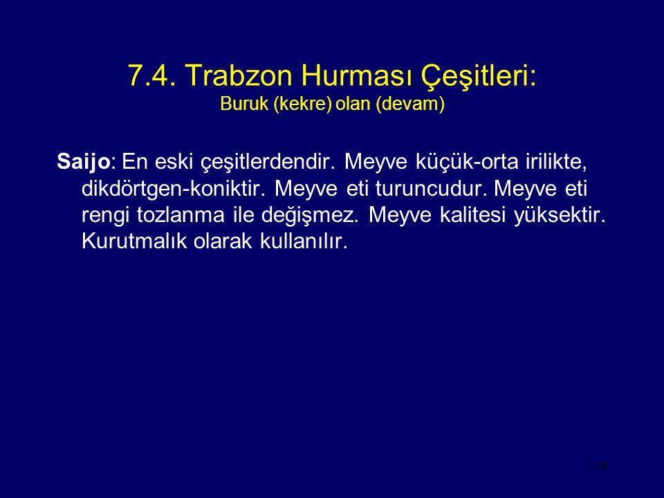 7.4. Trabzon Hurması Çeşitleri: Buruk (kekre) olan (devam)
