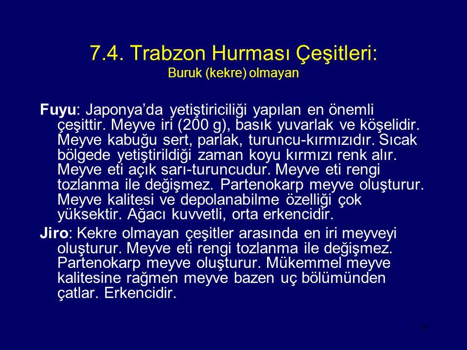 7.4. Trabzon Hurması Çeşitleri: Buruk (kekre) olmayan