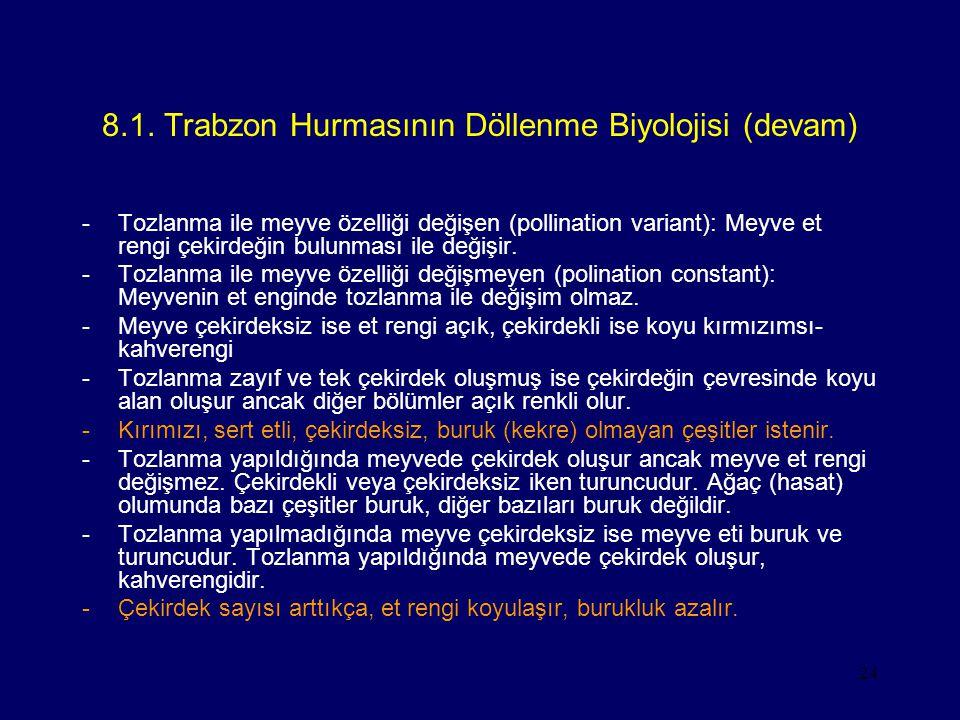 8.1. Trabzon Hurmasının Döllenme Biyolojisi (devam)