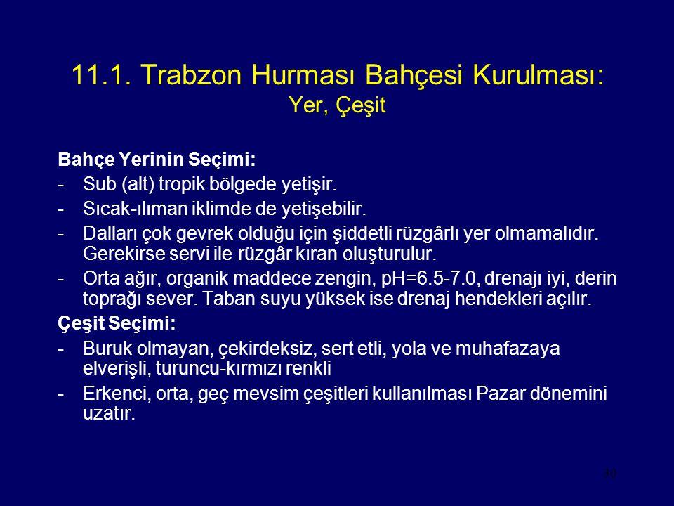 11.1. Trabzon Hurması Bahçesi Kurulması: Yer, Çeşit