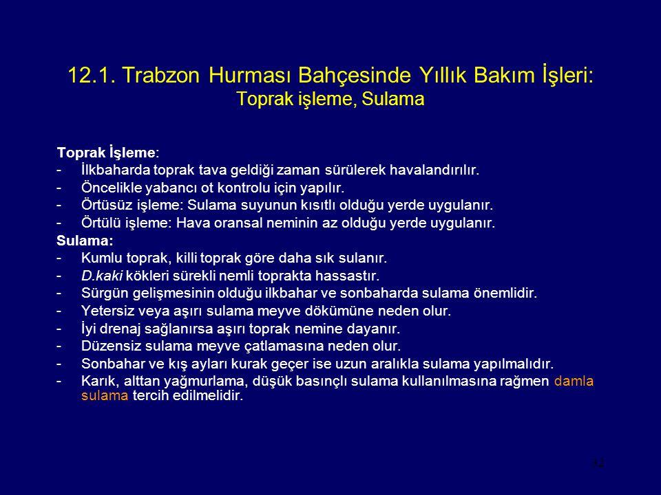 12.1. Trabzon Hurması Bahçesinde Yıllık Bakım İşleri: Toprak işleme, Sulama