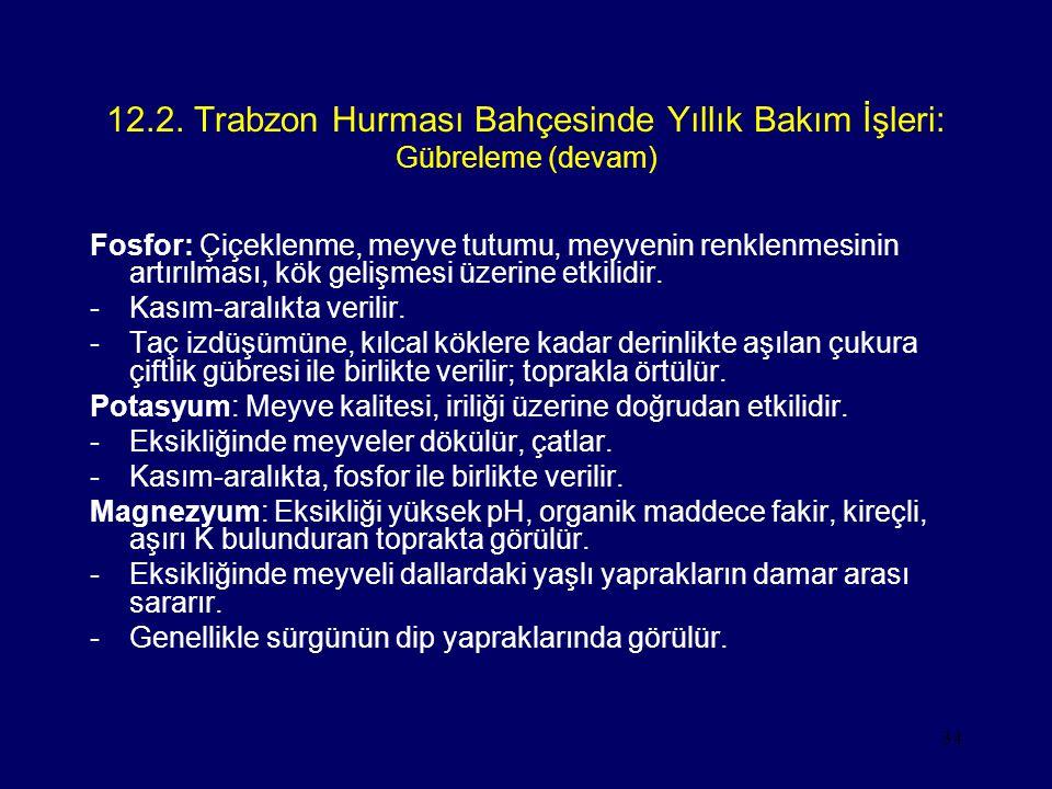12.2. Trabzon Hurması Bahçesinde Yıllık Bakım İşleri: Gübreleme (devam)